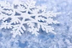 Neve e freddo, anche a Trinitapoli le scuole saranno chiuse lunedì