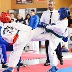 Campionati italiani di Taekwondo, tante medaglie per la Coreanteam Trinitapoli