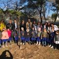 Trinitapoli celebra la Festa degli alberi