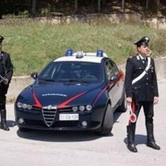 Sventati due furti di olive nelle campagne
