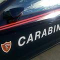 Furto in azienda vinicola, subito fermati dai carabinieri