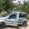 Guardie campestri Bari-Bat, i sindacati: «Al tavolo delle trattative Flai, Fai e Uila»
