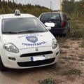 Ritrovata auto rubata nelle campagne di Trinitapoli
