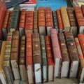 Maggio dei libri, in chiusura con il ricordo di Falcone e Tolkien