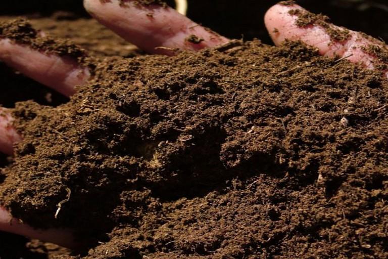 L'allarme di Coldiretti: «In fumo 410 ettari di suolo»