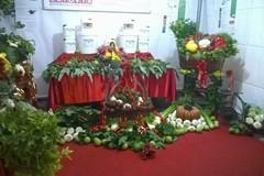 Sagra del carciofo, Trinitapoli espone i suoi prodotti