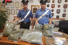 In giro con 5 chili di marijuana, arrestato incensurato