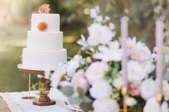 Ripartono i matrimoni in Puglia: green pass, distanziamento di 2 metri e niente Covid Manager