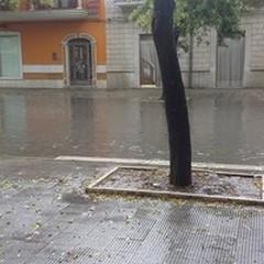 Bomba d'acqua su Trinitapoli: 40mm di pioggia in un'ora