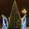 Si illumina l'albero di Natale in piazza, ma i positivi al Covid sono ancora tanti