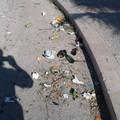 Sporcizia in città, Di Feo: «Troppi incivili»