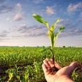 Recovery Plan, entro 10 anni un milione di posti di lavoro green