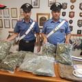 In giro con 5 chili di marijuana, arrestato incensurato