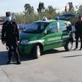 Footing sulla battigia e a caccia di asparagi, 11 sanzioni effettuate dai Carabinieri Tutela Biodiversità