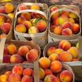 Sondaggio shock: solo un pugliese su 10 mangia frutta e verdura
